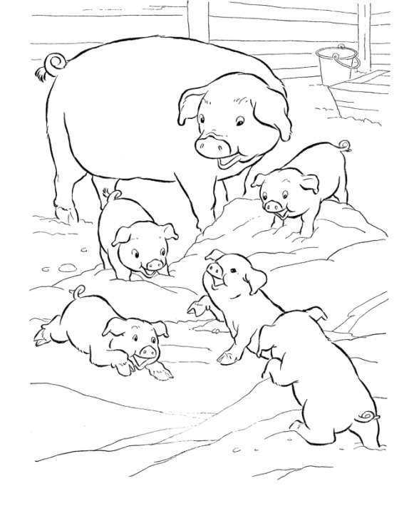 Pig Coloring Pages to Print Out - 99310