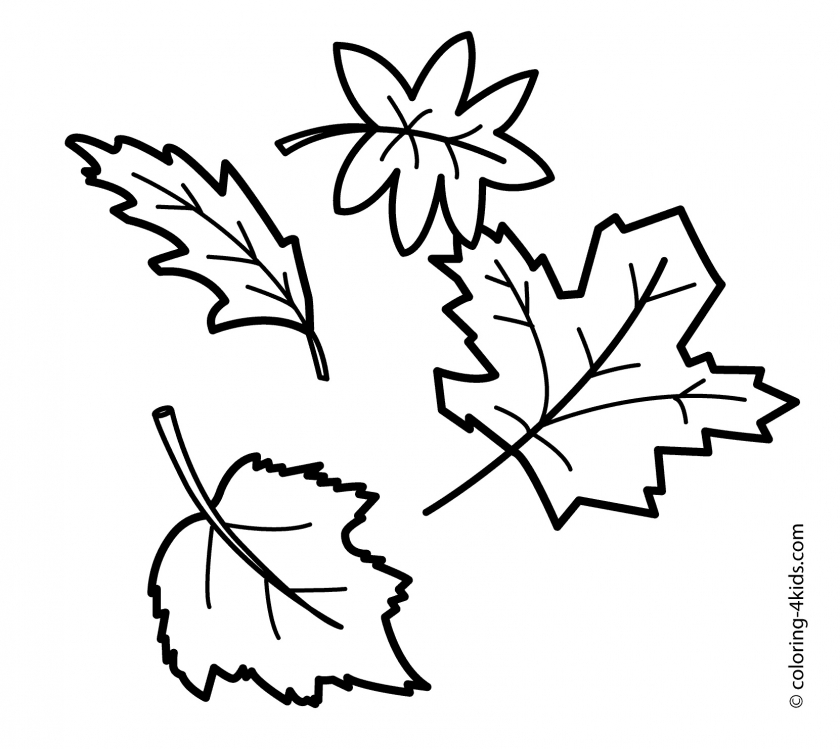 autumn leaves coloring pages   tagw0