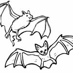 Bat Coloring Pages Printable   37154