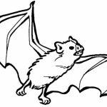 Bat Coloring Pages Printable   73189