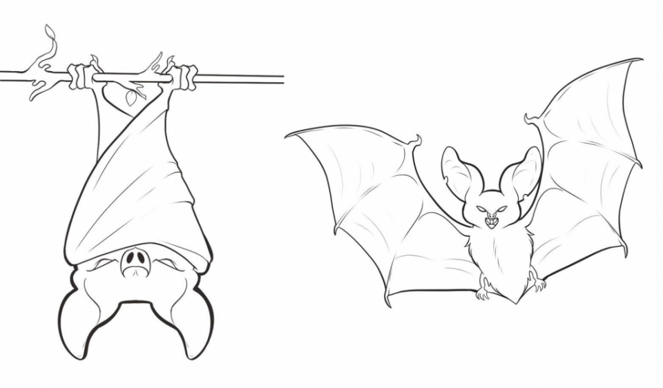 bat cave coloring pages | 20+ Free Printable Bat Coloring Pages - EverFreeColoring.com