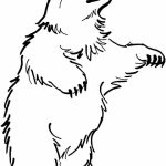 Bear Coloring Pages Free to Print   ya3m9