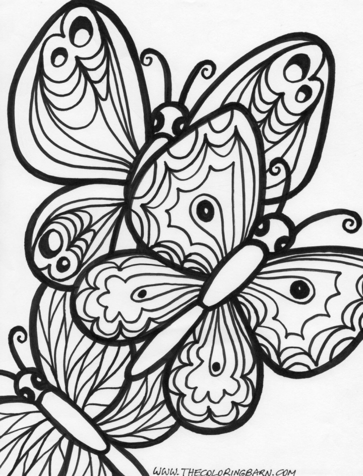 Butterfly Coloring Pages Adults Printable   7fht0