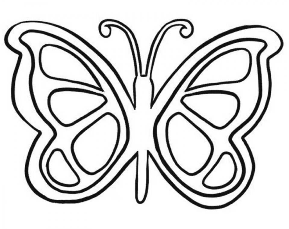 Butterfly Coloring Pages for Preschoolers   hg516