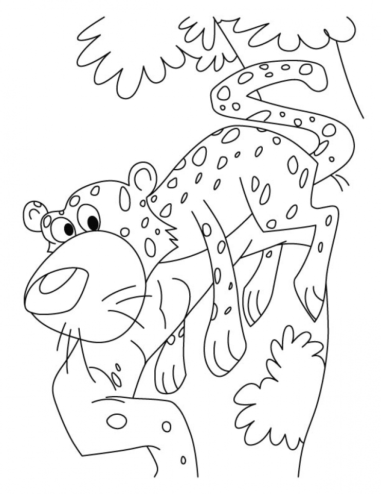 Cute Baby Cheetah Coloring Pages   mt83n