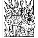 detailed flower coloring pages for adults printable - 7dg31