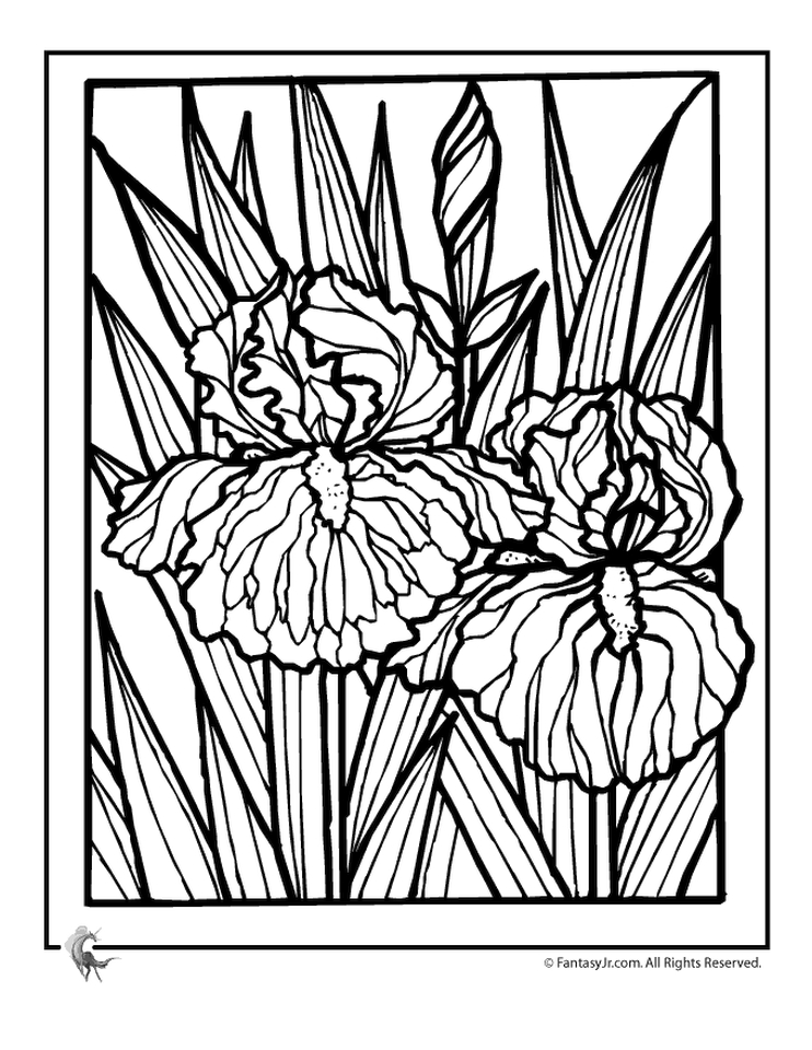 Get This detailed flower coloring pages for adults