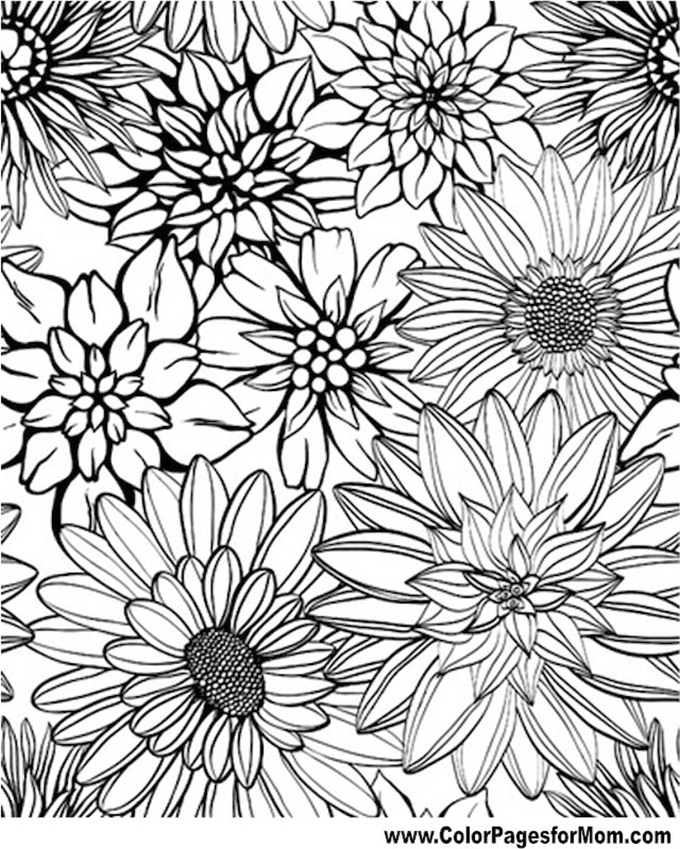 detailed flower coloring pages for adults printable - ycv42