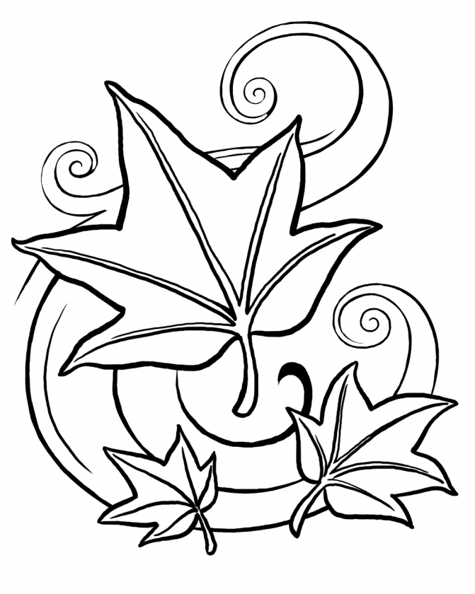 fall leaves coloring pages printable   yah48