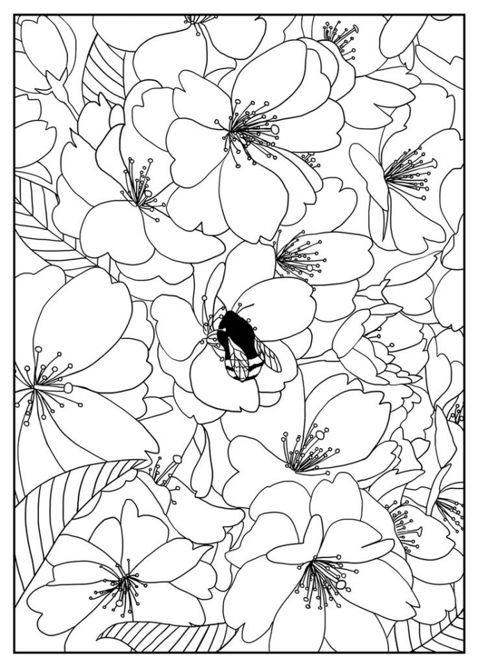 Flowers Coloring Pages for Adults Printable   74721