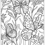 Free Printable Butterfly Coloring Pages for Adults   at461