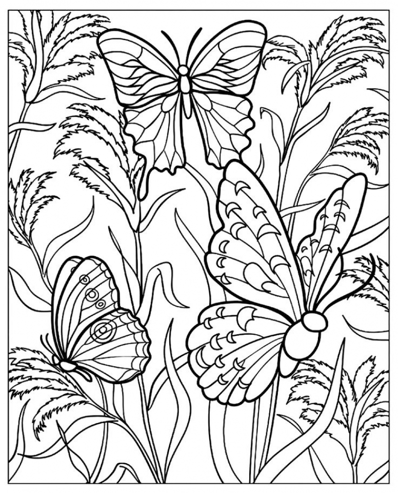 Get This Free Printable Butterfly Coloring Pages for Adults at461 !