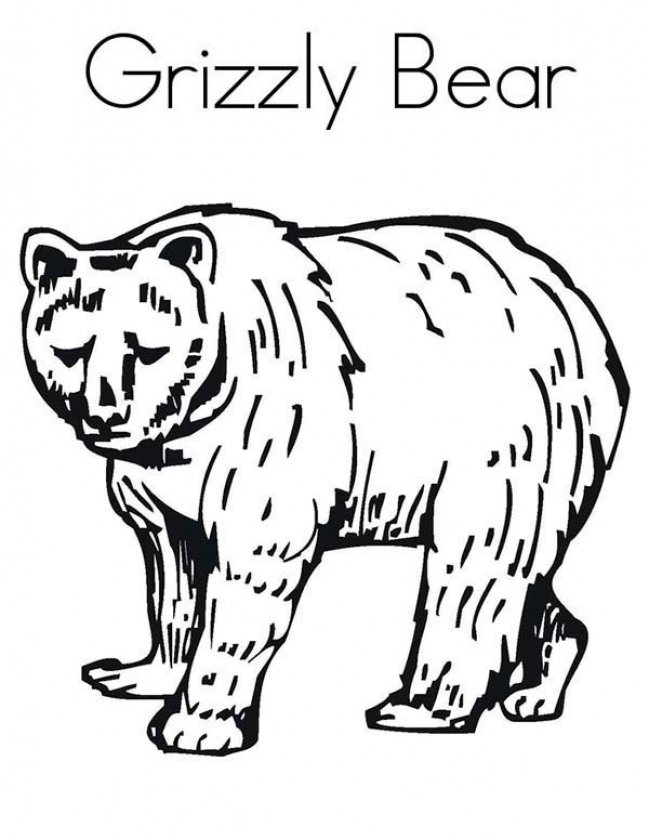 Get This Grizzly Bear Coloring