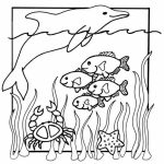 Ocean Coloring Pages for Preschoolers   y3m86