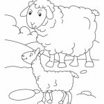 Sheep coloring pages preschool   wayc7