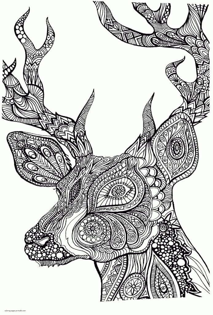 Get This Adult Coloring Pages Animals Deer