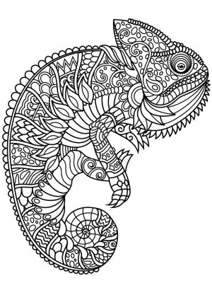 Adult Coloring Pages Animals Chameleon 1