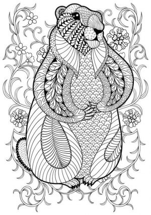 Adult Coloring Pages Animals Otter 1