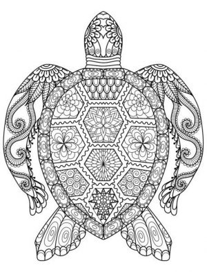 Adults Printable Summer Coloring Pages – 73097
