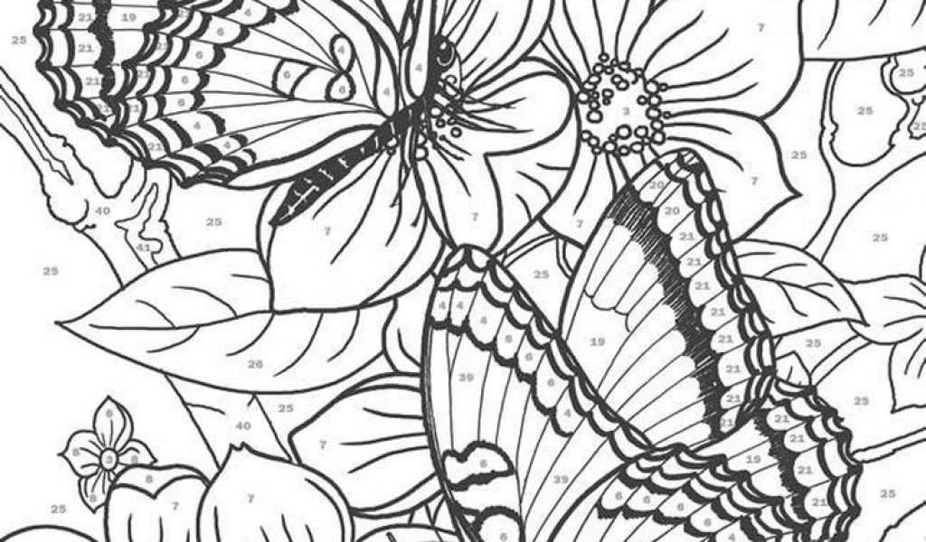 advanced coloring pages of butterfly for adults 56172 - Advanced Coloring Pages Butterfly