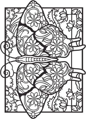 Advanced coloring pages of Butterfly for Adults – 76731