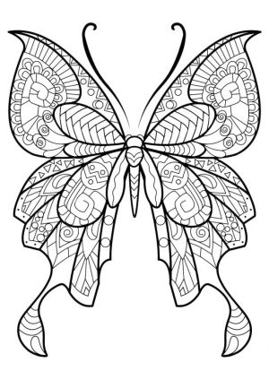 Difficult Butterfly Coloring Pages for Adults – 78367