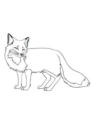 Fox Coloring Pages Free – 89xbs