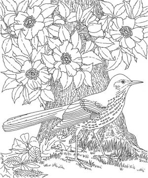 Free Adults Printable of Summer Coloring Pages – 67219