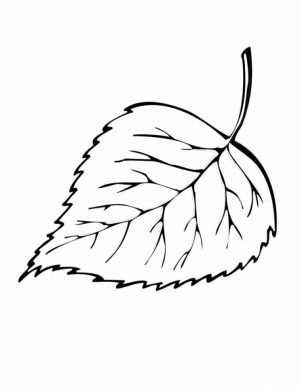 Leaf Coloring Pages Free to Print – ycve1