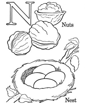 Letter N Coloring Pages Nuts – n381n