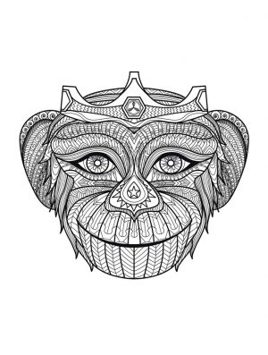 Monkey Coloring Pages for Adults – 067201