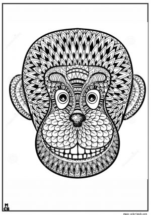 Monkey Coloring Pages for Adults – 31679