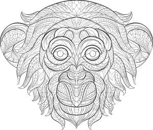 Monkey Coloring Pages for Adults – 60731