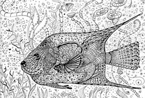 Online Summer Printable Coloring Pages for Adults – 63121