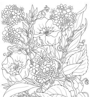 Online Summer Printable Coloring Pages for Adults – 99211