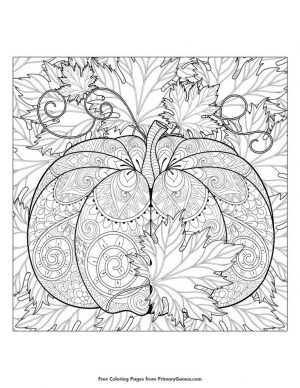 Pumpkin Coloring Pages for Adults to Print – ts412