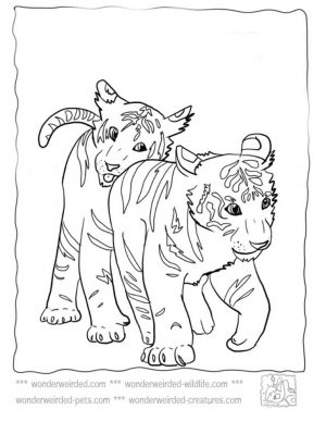 Tiger Coloring Pages to Print for Free – 38901