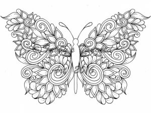 Adult Butterfly Coloring Pages to Print   21674