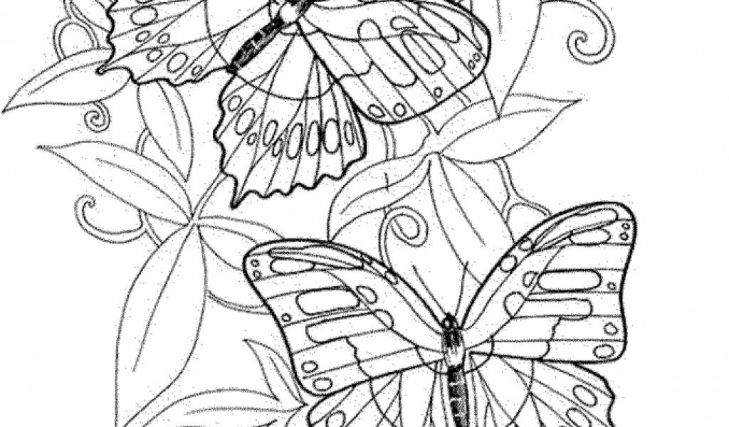 advanced coloring pages for adults coloring pages