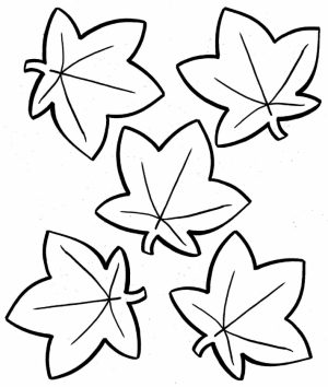 autumn leaves coloring pages   8fgt5