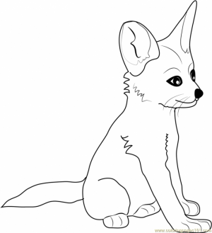 baby fox coloring pages   1n38v