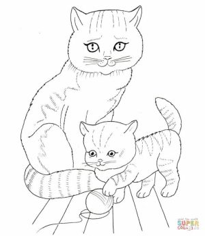 Baby Kitten Coloring Pages   91628