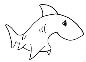 Baby Shark Coloring Pages   21169