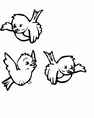 Bird Coloring Pages for Kids   93869