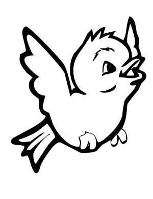 Bird Coloring Pages Free Printable   26573