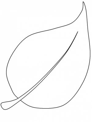 Blank Leaf Coloring Pages Printable   ut5b1