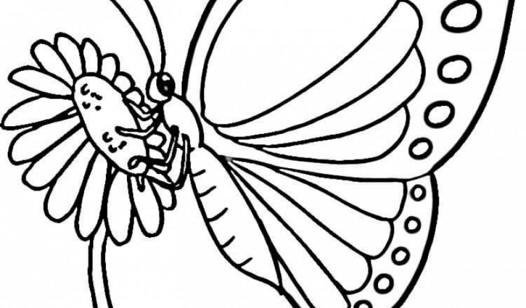 butterfly coloring book pages 861te - Butterfly Coloring Book