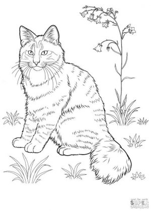 cat coloring pages yfgr1
