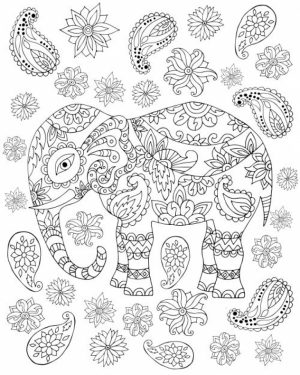 Challenging Coloring Pages of Elephant for Adults   685cuy