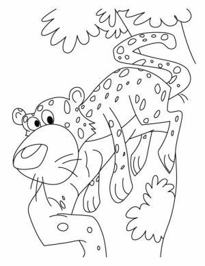 Cute Baby Cheetah Coloring Pages   mt83n